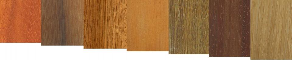 timber species2
